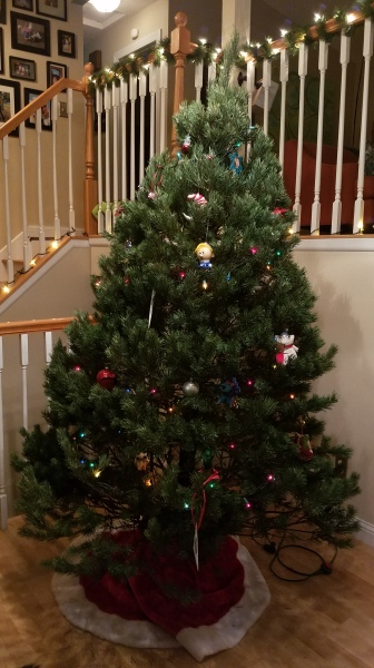 "This year's tree: ""Gary Christmas"". (We name our tree every year.)"
